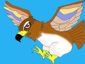 アフィリラブ 鷹